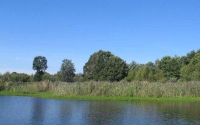 Slangebeekbron